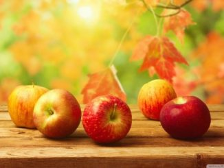 fall-apples_654658683