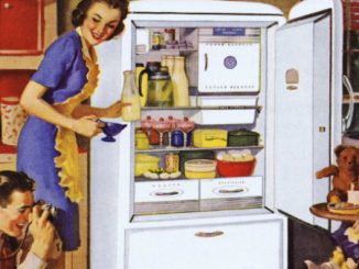 fridgecouple