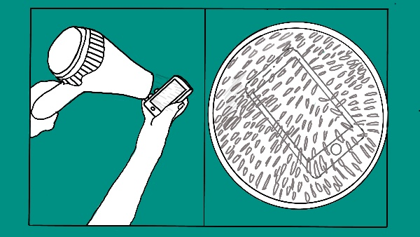 Should You Blow Dry A Wet Phone?