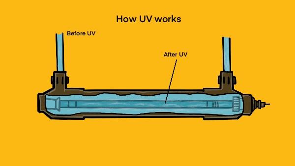 How UV Water Purifiers Work
