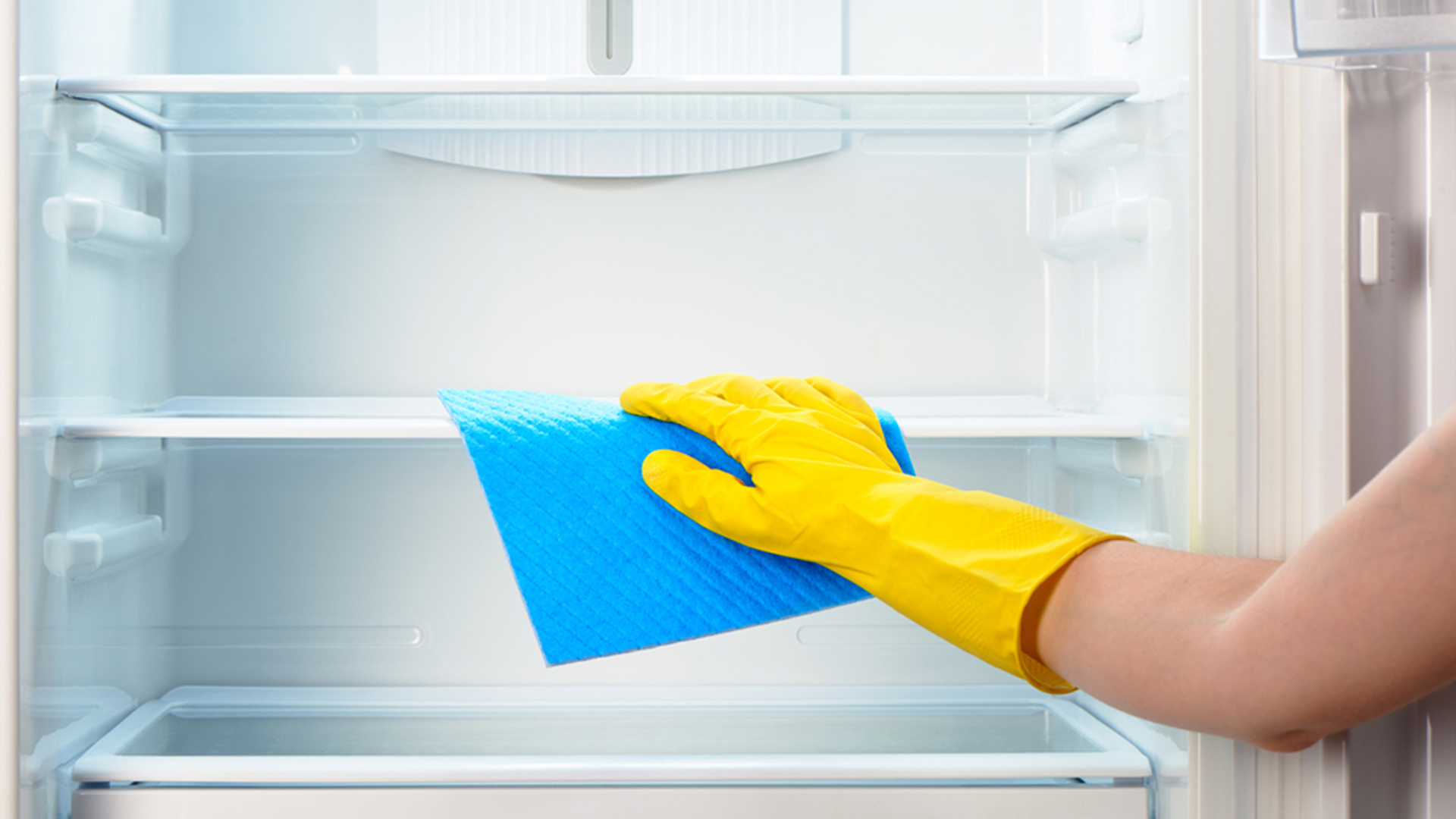Refrigerator Cleaning Maintenance