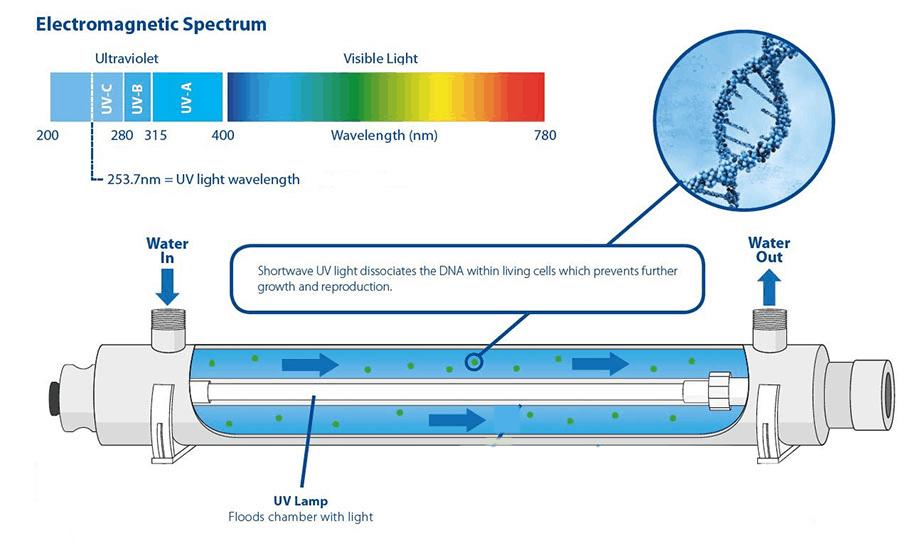 UV Water Purifier Filtration Process Diagram